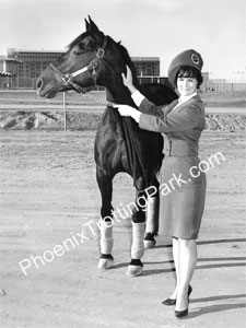 Vintage Phoenix Horse Racing Photo from 1965