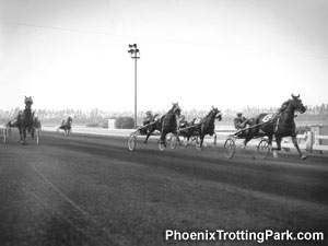 Harness Racing at Santa Anita Park in California